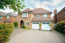 5 bedroom Detached home in Tadworth