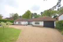 Bungalow for sale in Chipstead