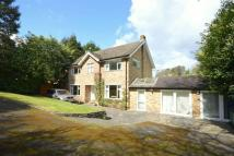 3 bed Detached property for sale in Kingswood