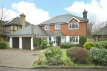 Detached house to rent in Purley