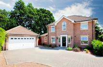 Detached property in Chapel Garth...