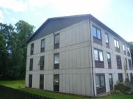 Flat to rent in Tulloch Court, Dingwall...