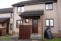 Flat to rent in Birchview Court, Inshes...