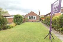 2 bedroom Detached Bungalow for sale in Heathfield, Harwood...