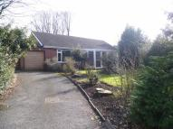 3 bed Detached Bungalow in Temple Drive, Nuthall...