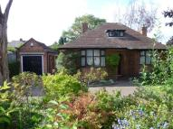 Detached Bungalow to rent in Wollaton Road, Beeston...