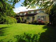 Detached property to rent in Charnwood Hollow Lane...