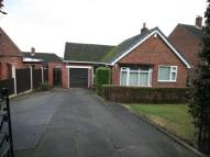 Detached Bungalow to rent in Conery Close, Helsby...