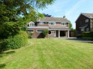 Detached property to rent in Chapel Lane, Elsham...