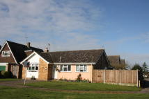 3 bed Detached Bungalow to rent in Totham Hill Green...