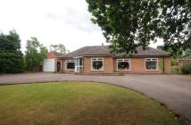 4 bed Bungalow in Jande, Tamworth Road...