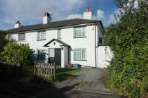Roseway semi detached house to rent
