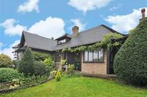 3 bed Detached house for sale in Thorpewood Ave, London