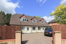 Detached house for sale in Pantmawr Road, Whitchurch