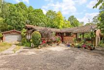 Kings Worthy Detached property for sale
