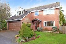 Detached house for sale in Fulflood, Winchester...