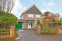 4 bed Detached house for sale in Colden Common...