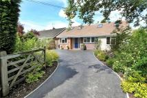 Detached Bungalow in Kings Worthy, Hampshire