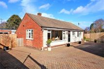 Detached Bungalow for sale in Littleton, Winchester