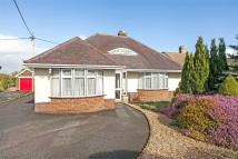 3 bedroom Detached Bungalow for sale in South Wonston...