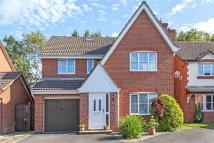 Colden Common Detached house for sale