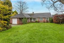 3 bed Detached Bungalow in Littleton, Winchester...
