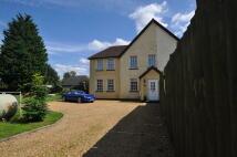 Cottage in Allens Green...