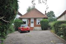 3 bedroom Detached Bungalow in Thorley Hill...