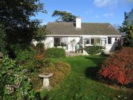 Bungalow for sale in Totnes, Devon