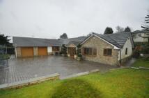 4 bedroom Detached property for sale in Back Moor, Mottram