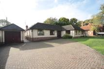 Chilton Road Detached Bungalow to rent