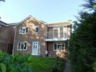 Detached property to rent in Willow Close...