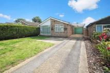 Detached Bungalow in Hazlemere