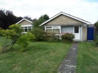 Detached Bungalow to rent in Walcot Walk, Netherton...