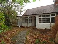 Hawthorn Road Semi-Detached Bungalow to rent