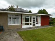 Semi-Detached Bungalow to rent in Llys Awelon, St Clears...