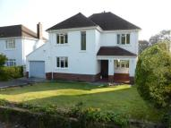 property to rent in Bronwydd Road...