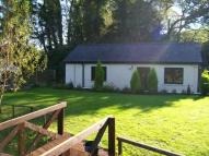 Cottage to rent in Meidrim Road, St Clears...