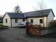 3 bed Bungalow to rent in Llanboidy Road, Whitland...