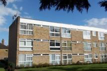 3 bed Flat to rent in Barclay Court, Park View...