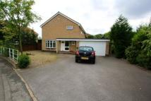 4 bed Detached property to rent in Canada Drive, Cottingham...
