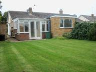 Tolleshunt D'Arcy Semi-Detached Bungalow to rent