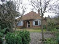 Detached Bungalow in Kittens Lane, Loddon...