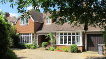 3 bed Detached property to rent in Wenhaston Lodge...