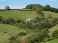 4 bedroom Detached house for sale in Birdsmoorgate, Dorset