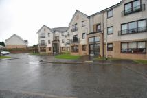 Flat to rent in Edward Place, Stepps...