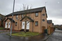 2 bed semi detached home to rent in Strathallan Gardens...