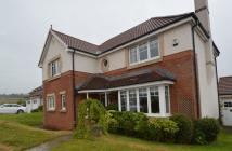 4 bed Detached house to rent in Mousa Park...