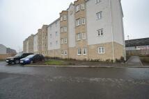 Flat to rent in Lloyd Street, Rutherglen...