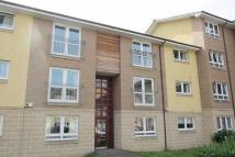 Flat to rent in Whitehill Court...